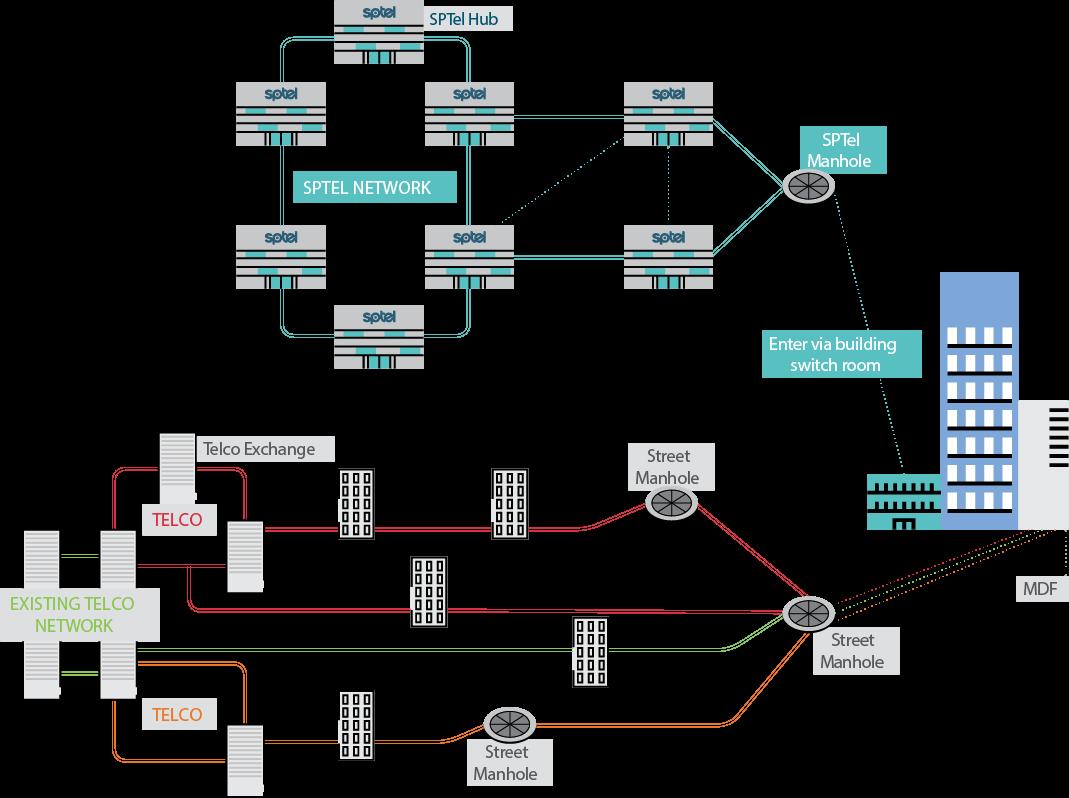 network-diversity