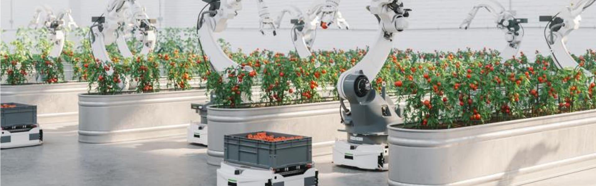 iot for urban farms